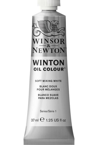 Winsor & Newton Mixing White