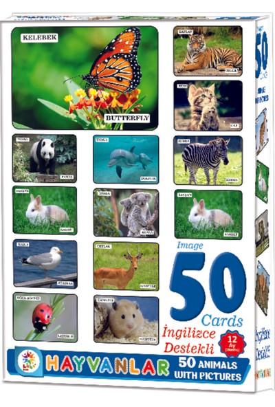 Laço Resimlerle Hayvanlar Alemi Eğitici Kelime Kartları 50 Parça
