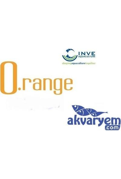İnve O.Range Start 100-200-Mikron 100Gr Açık