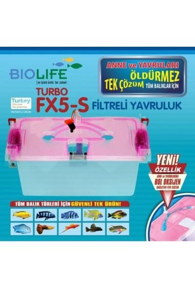 Biolife Fx5-S Turbo Yavruluk