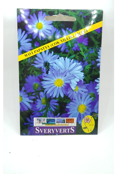 Sveryverts Mavi Papatya Çiçeği Tohumu Tekli
