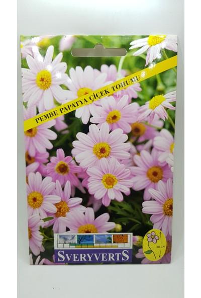 Sveryverts Pembe Papatya Çiçeği Tohumu Tekli