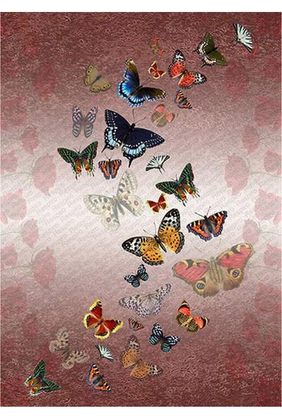 Resmiro Kelebek Desenli Dijital Baskılı Halı