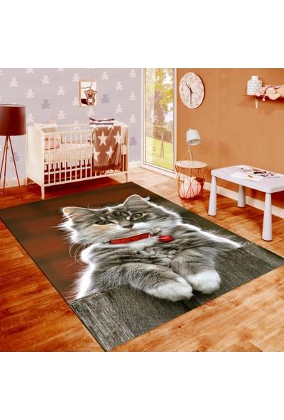Resmiro Kedi Desenli Dijital Baskılı Halı