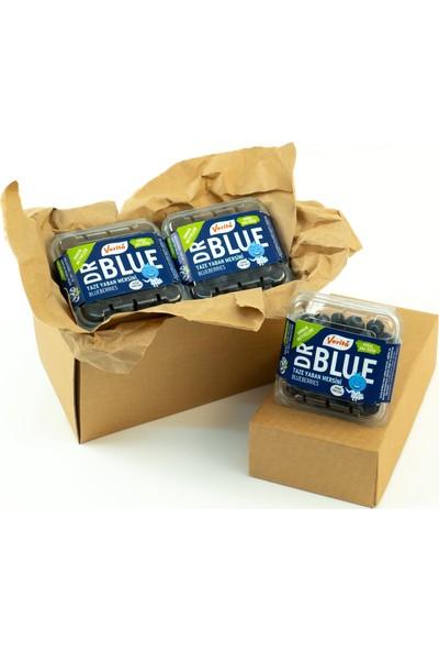 Verita Dr. Blue 3'lü Keşif Paketi
