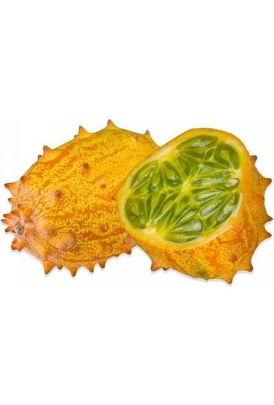 Çam Tohum Tropikal Kivano Meyvesi Tohumu 5'li Dikenli Kavun
