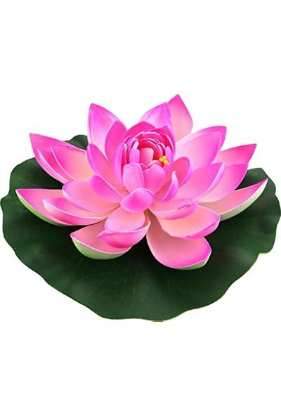 Çam Tohum Nadir Kutsal Lotus Çiçeği Tohumu Tekli Tohum Su Nilüferi