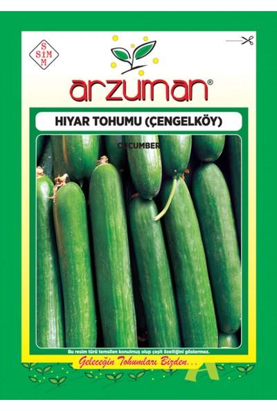 Arzuman Salatalık Çengelköy Hıyar Tohum 10 gr