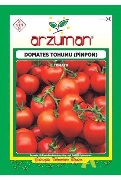 Arzuman Sebze Chery Pinpon Domates Tohum 10 gr