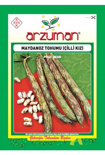 Arzuman Sebze Çilli Kız Maydonoz Fasulye Tohumu 50 gr