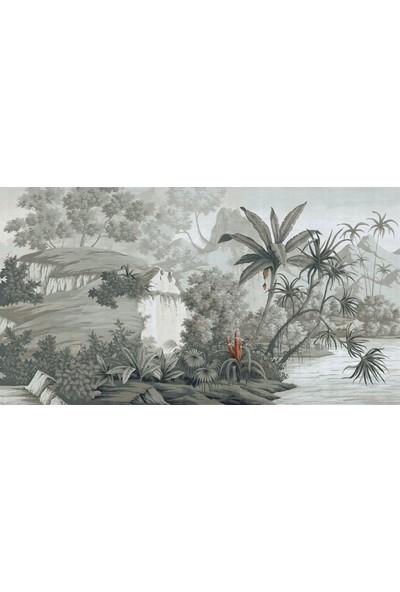 Duvar Kağıdı Marketi Orman ve Tropikal Ağaçlar Duvar Kağıdı