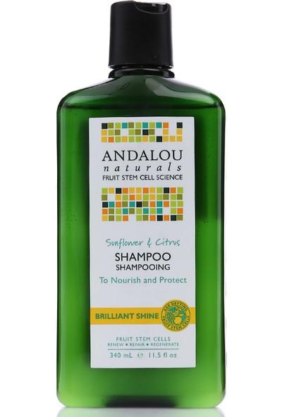 Andalou Ayçiçeği ve Narenciye Aromalı Parlaklık Verici Vegan Şampuan 340 ml