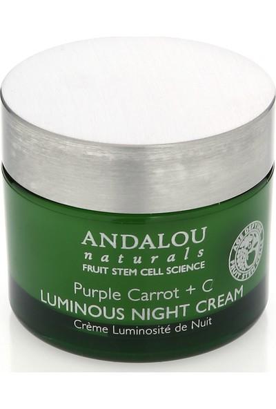 Andalou Purple Carrot C Luminous Night Cream /aydınlatıcı Gece Nemlendirici Vegan Yüz Kremi 50 ml