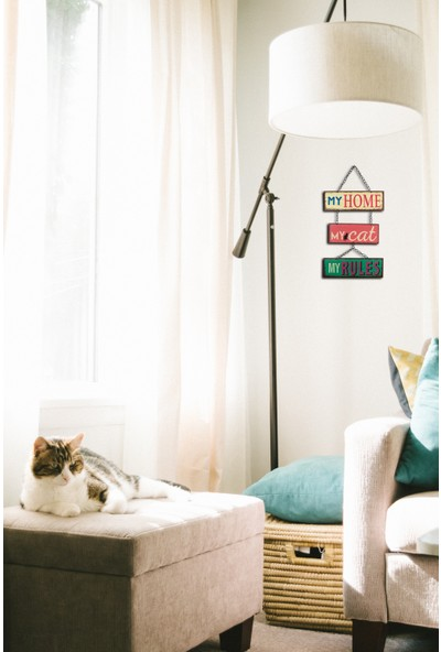 Carma Concept Home Cat Rules