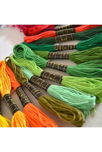 Lovyco 50 Farklı Renk Etamin Kanaviçe Brezilya Nakış Ipi