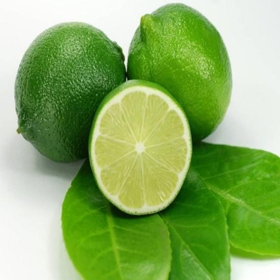 Ebruli Tahiti Lime Yeşil Limon Fidanı 2 Yaş
