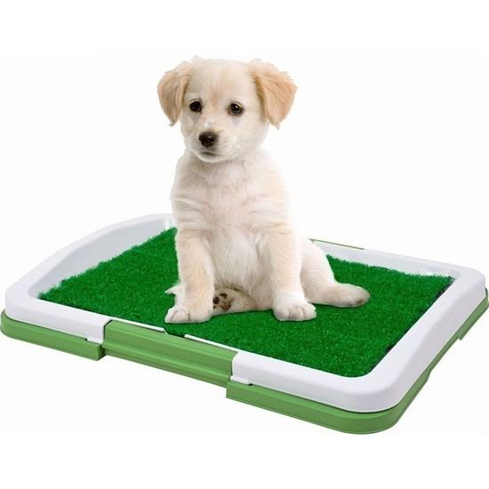 Kapınakadar Köpek Tuvalet Eğitim Seti Potty Trainer