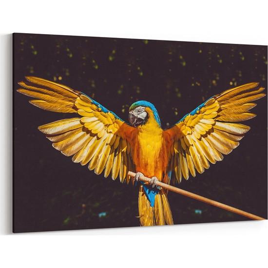 Tabrika Makav Papağanı Tablosu Fiyatı - Taksit Seçenekleri