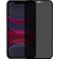 Microlux iPhone 11 Ekran Koruyucu Gizli Hayalet Cam 9D Tam Kaplama