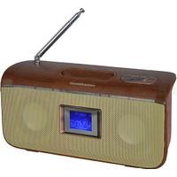Goldmaster SR-174 USB & Sd Radyo