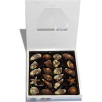 J. D. Gross Belgian Chocolate Sea Shells Deniz Kabuğu 250 gr