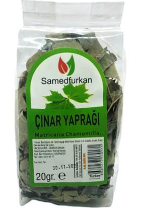 Samed Furkan Çınar Yaprağı 25 gr