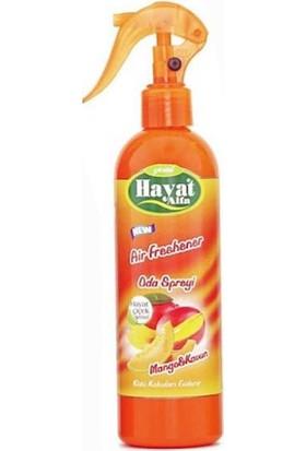 Hayat Oda Spreyi Mango - Kavun 350 ml