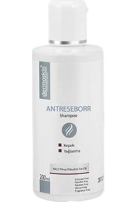 Dermoskin Antereseborr Şampuan