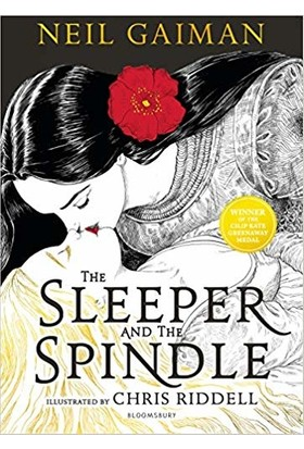 The Sleeper and the Spindle - Neil Gaiman