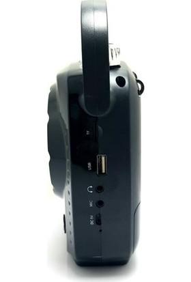 Goldaudio Gr-11 Kablosuz Mikrofonlu Bluetooth Hopalör
