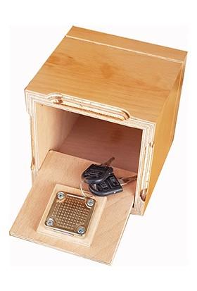 Ahşapkutular Lux Cilalı Tip Box Kumbara