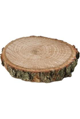 Acar Süs Ağaç Kütük Yükseltici Palamut Meşesi