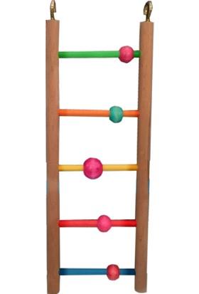 ANS Renkli Beş Basamaklı Boncuklu Kuş Merdiveni 7 x 20 cm