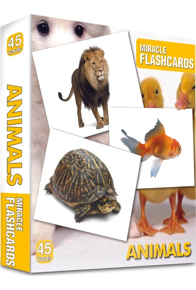 Miracle Flashcards: Domestic Animals-Kolektif