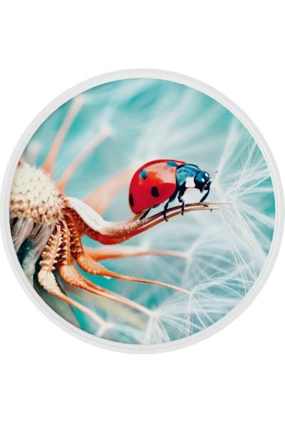 Onelineavm Dijital Uğur Böceği Baskılı Yuvarlak Ahşap Zigon Sehpa