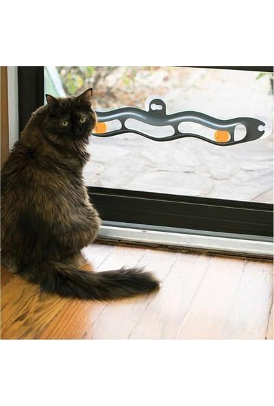 Track'n Roll Cama Yapıştırılan Vantuzlu Kedi Oyuncağı