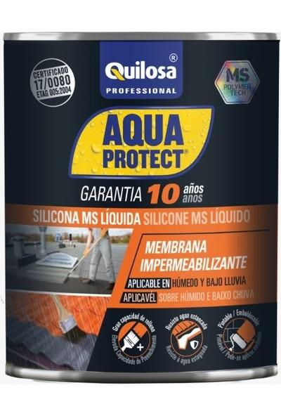 Quilosa Aquaprotect Likit Ms Su Yalıtım Kaplaması Beyaz 1 kg