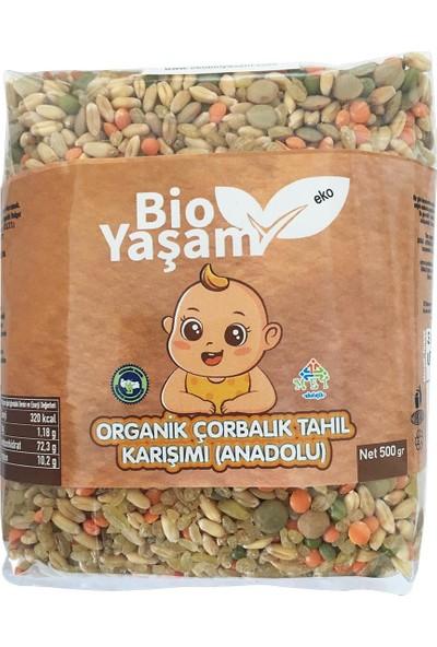 Bio Yaşam Organik Çorbalık Tahıl Karışımı Bebek 500 gr