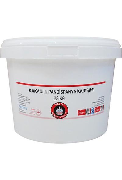 Pasta Cumhuriyeti Kakaolu Pandispanya için Toz Karışım 25 kg