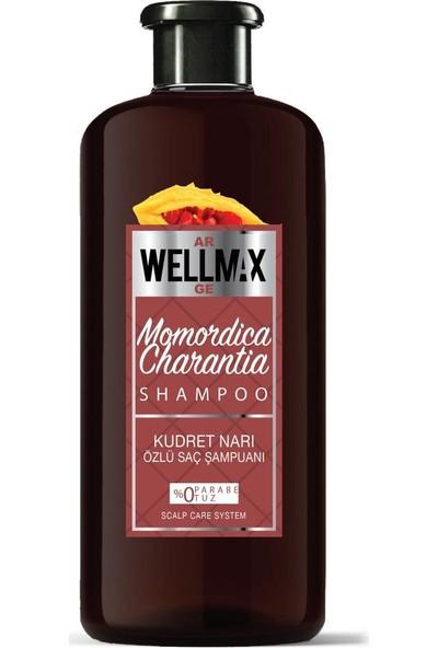 Wellmax Şampuan Yeni Formül Kudret Narı Özlü 500ML