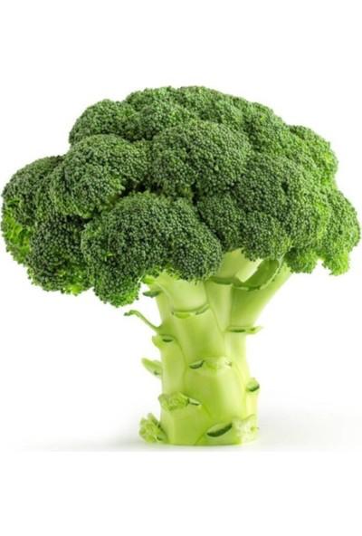 Çam Tohum Brokoli Tohumu 30'lu