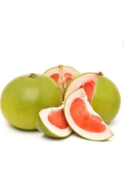 Çam Tohum Nadir Dev Pamelo Meyvesi Tohumu 3'lü