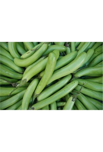 Çam Tohum Nadir Yeşil Uzun Patlıcan Tohumu 5'li