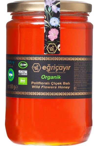 Eğriçayır Polifloralı Bal Organik 850G