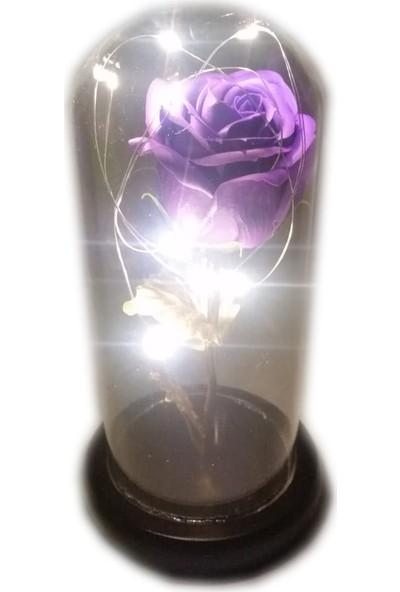 1001 Hediye Sevgililer Günü Hediyesi Led Işıklı Fanus Içerisinde Mor Gül