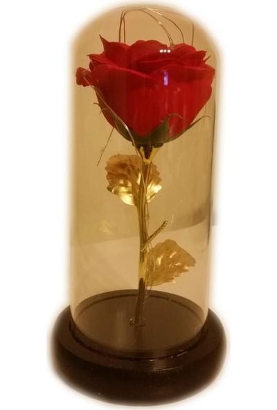 1001 Hediye Sevgililer Günü Hediyesi Led Işıklı Fanus Içerisinde Kırmızı Gül