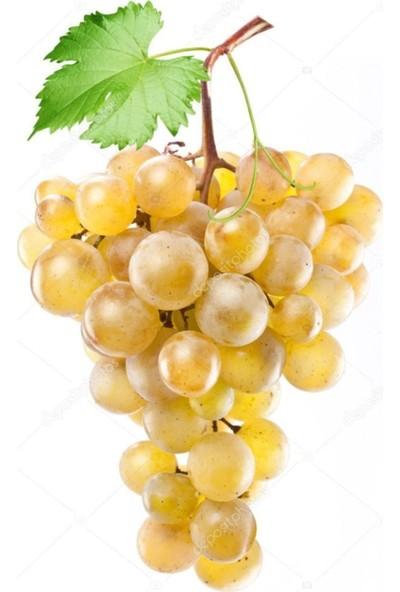 Çam Tohum Nadir Sarı Golden Üzüm Tohumu 5'li