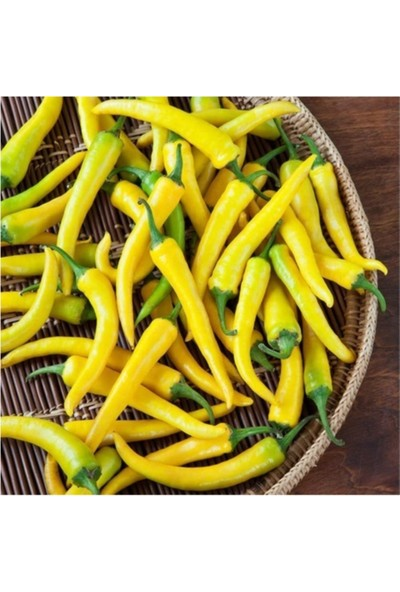 Çam Tohum Sarı Turşuluk Acı Biber Tohumu Sarı Süs Biberi Eko Paket 200'lü