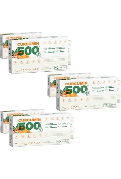 Patina Curcumin 500 Herbal Food Altın Yoğurt Kürü 3'lü Paket