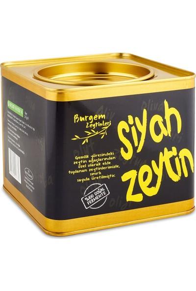 Burgem Zeytinleri Zeytin 2 kg